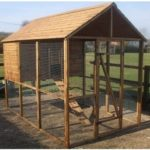 Best Wood for Chicken Coop