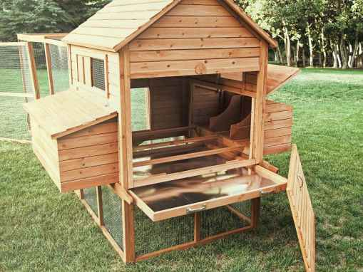 Cheap DIY Chicken Coop Ideas