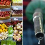 Fuel and Food Prices