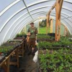 Greenhouse Overhead End View