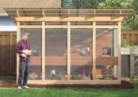 building chicken coop for dummies