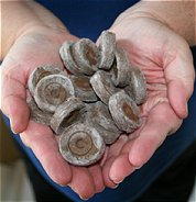 handful of peat pellets