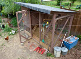 Maintenance of the Chicken Coop