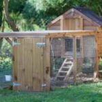 Plans for a Chicken Coop